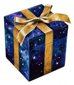 The Gift Box: items available to purchase online contributing to fundraising